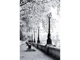 Фрески и фотообои, Каталог Фотоискусство, арт. ID12410