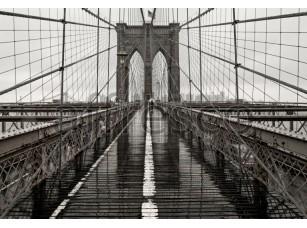 Фрески и фотообои, Каталог Фотоискусство, арт. ID10021