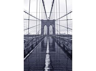 Фрески и фотообои, Каталог Фотоискусство, арт. ID10333
