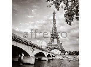 Фрески и фотообои, Каталог Фотоискусство, арт. ID12435