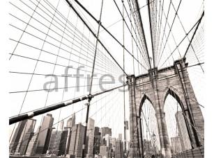 Фрески и фотообои, Каталог Фотоискусство, арт. ID13329