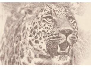 Фрески и фотообои, Каталог Сюжеты, арт. ID136552
