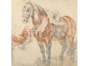 Фрески и фотообои, Каталог Сюжеты, арт. ID136560