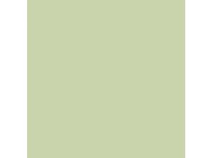 Краска Farrow & Ball цвет Cooking Apple Green 32