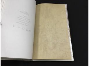 Обои B1181105 Plain Resource vol. 1 Aura