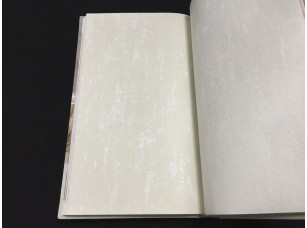 Обои H2880304 Plain Resource vol. 1 Aura