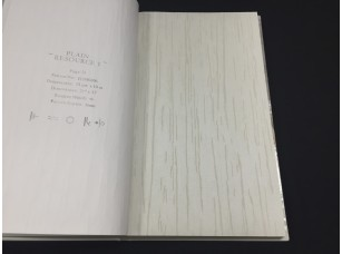 Обои H2890805 Plain Resource vol. 1 Aura