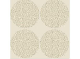 Dimensions/ Helix Ivory обои