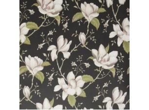 Botanica / Lilium Ebony обои