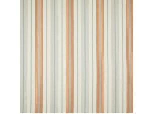Hummingbird / Seasons Tangerine ткань