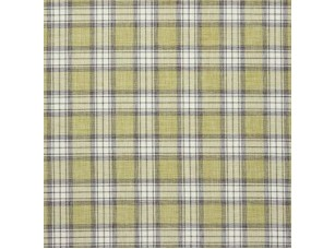 Sketchbook / Shaker Check Fern ткань