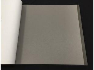 Российские обои Milassa, коллекция Ambient vol.2, артикул AM3009/1