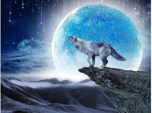 Фотообои «Волк на чужой планете»