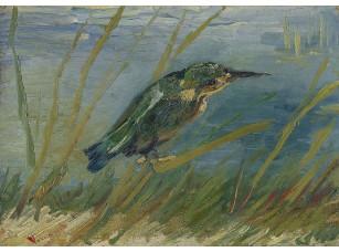Фотообои «Ван Гог. Зимородок у воды»