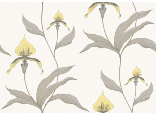 Обои Orchid CONTEMPORARY COLLECTION 95/10057