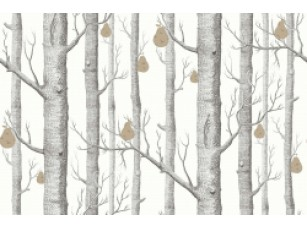 Обои Woods & Pears CONTEMPORARY COLLECTION 95/5027