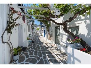 Фотообои «Милая улочка с белыми домами»