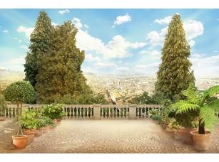 Фотообои «Большая терраса с деревьями»