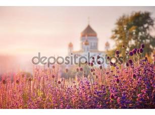 Фотообои «Вид на Собор Христа Спасителя в Москве»
