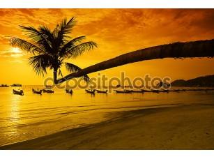 Фотообои «Закат с пальмами и лодки на тропическом пляже»