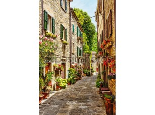 Фотообои «Узкая улочка в Старом городе»