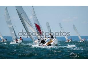 Фотообои «Группа яхта парусный на регате»
