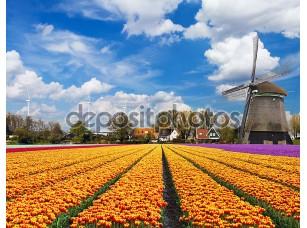 Фотообои «голландский пейзаж»