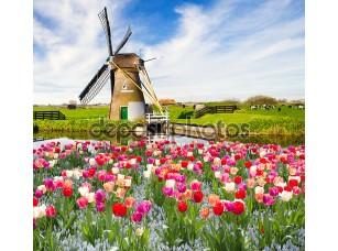 Фотообои «Голландия»