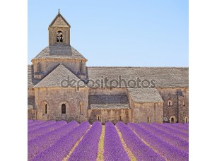 Фотообои «senanque аббатство цветущей лаванды цветы деталь. горд, Люберон»