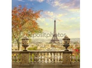 Фотообои «Панорама Парижа с террасы»