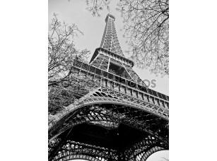 Фотообои «Эйфелева башня, Париж»