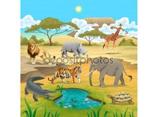 Фотообои «Африканских животных в природе.»