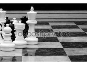 Фотообои «LifeSize шахматы»
