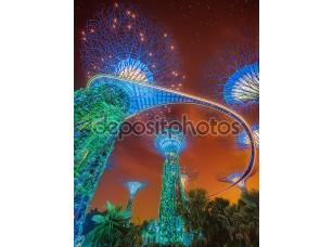Фотообои «supertree в сады, залив, Сингапур»
