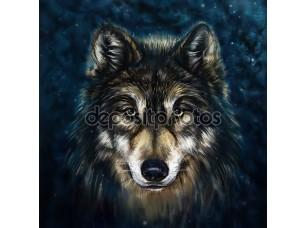 Фотообои «Wolf head»