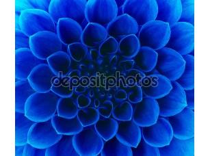 Фотообои «Абстрактный синий цветок»