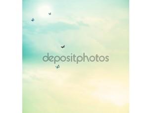 Фотообои «Бабочки в небе»