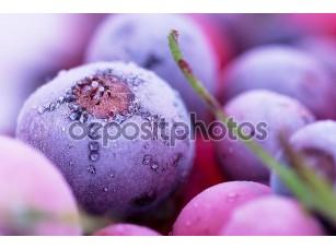 Фотообои «Замороженные ягоды»