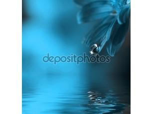 Фотообои «Капля воды падает лист»