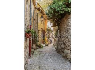 Фотообои «Narrow street with flowers»