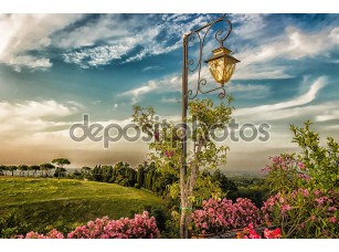 Фотообои «Lamp on green view»