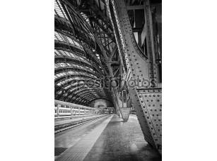 Фотообои «Milan Central Station - binary»