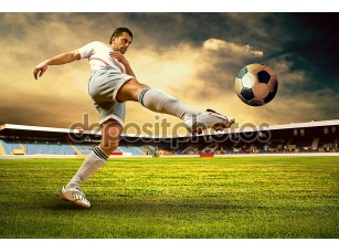 Фотообои «Happiness football player after goal on the field of stadium wit»