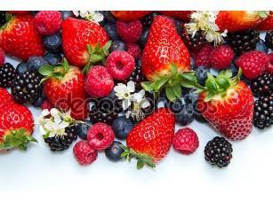 Фотообои «Berries on white Background»