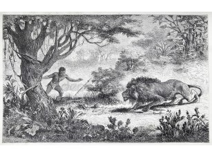 Фотообои «Betschuana племя человек находит своего брата, едят с Лев»