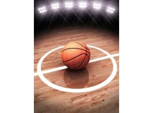 Фотообои «3D визуализация баскетбола на корт с освещением стадион»