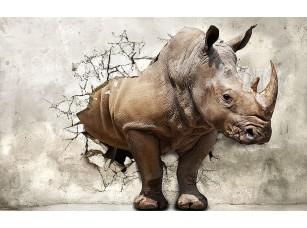 Фотообои «3D носорог»