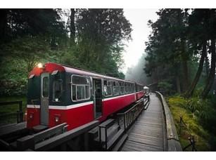 Фотообои «Алишан лесной поезд железнодорожной»