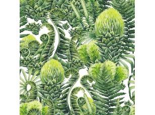 Фотообои «Watercolor prehistoric plants»