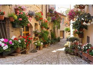 Фотообои «Улочка в цветах»